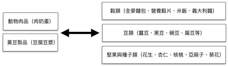 圖一、蛋白質的替代方案(NutriSport提供)