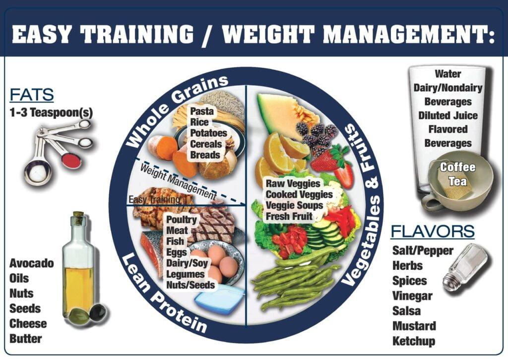 EASY TRAINING 輕量級訓練
